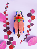 Studio Roof - Wall Decoration Insects - Giant Lady Beetle