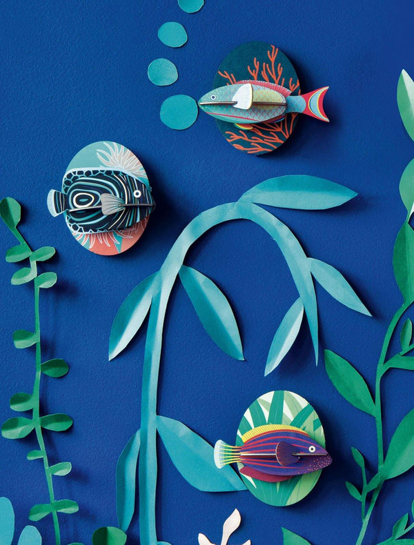Studio Roof - Wall Decoration Fish Small - Parrotfish