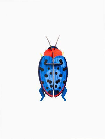 Studio Roof - Wall Decoration Insects Small - Fungus Beetle