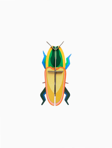 Studio Roof - Wall Decoration Insects Small - Madagascar Beetle