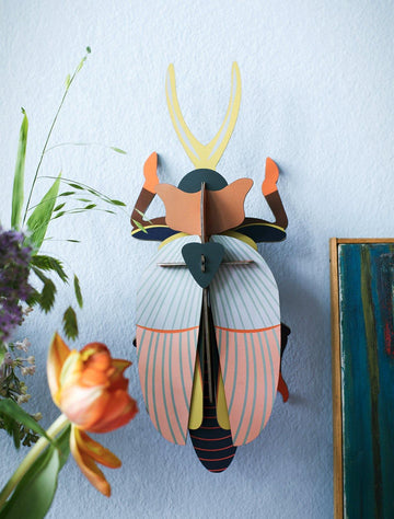 Studio Roof - Wall Decoration Insects - Rhinoceros Beetle