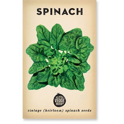 Little Veggie Patch Co Heirloom Seeds - Spinach 'Bloomsdale'