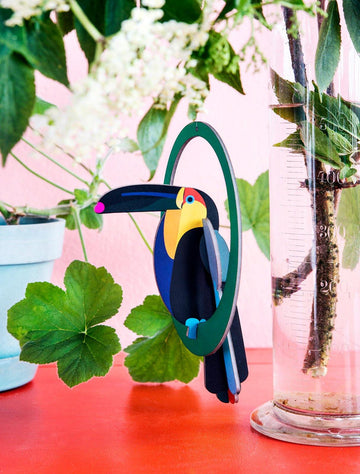 Studio Roof - Pop Out Card - Swinging Toucan