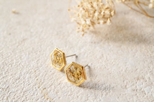 Real Dried Flowers Hexagon Gold Stud Earrings