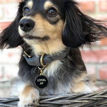 Load image into Gallery viewer, Pet ID Tag - Loyal AF - Black