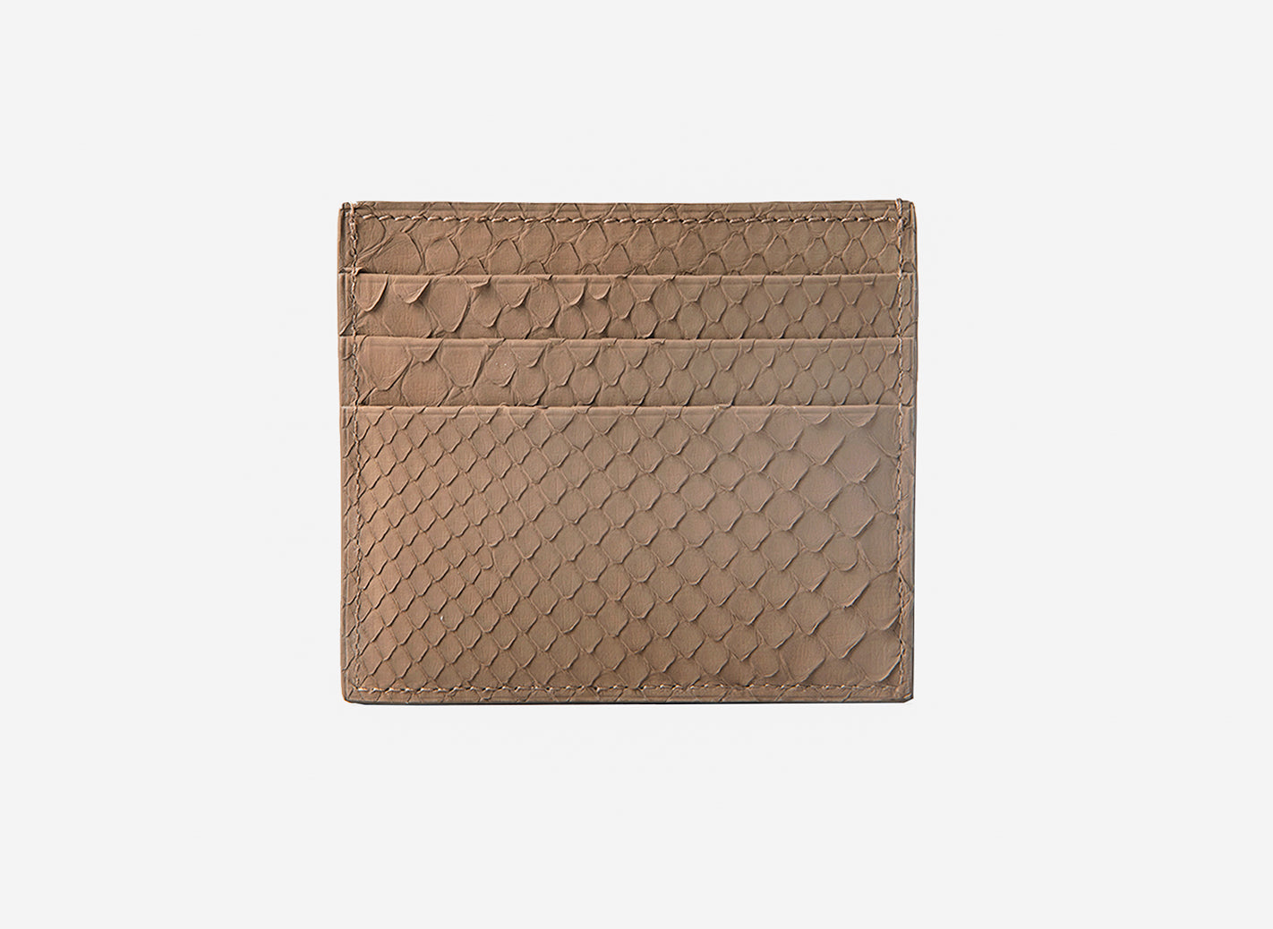 Earth Python Card Holder (1944PY)
