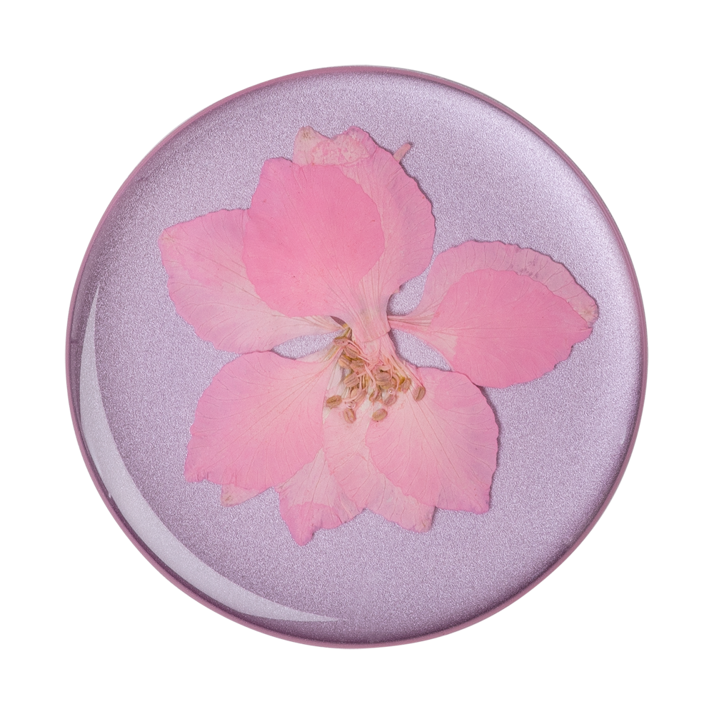 Pressed Flower Delphinium Pink 粉翠雀壓花 <可替換泡泡帽>