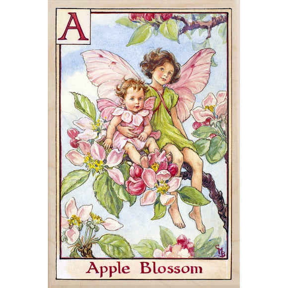 apple blossom-The Flower Fairies ©Cecily Mary Barker. Museum quality wooden postcards, greeting cards, magnets and wall art made in the UK. Printed to order, dispatched in 3-4 days.  We only use FSC wood.  the wooden postcard company