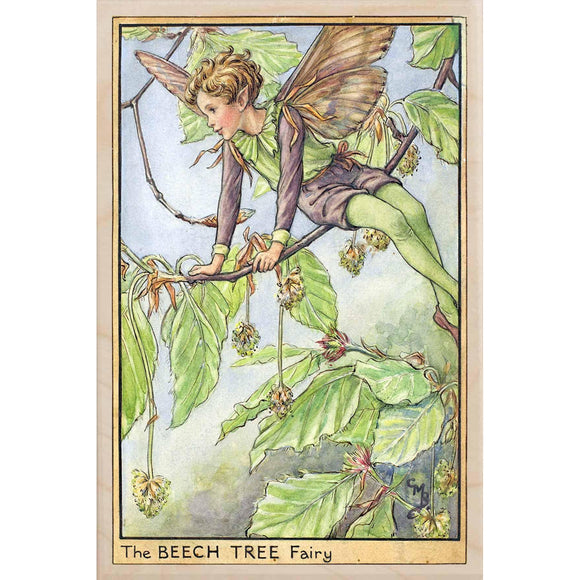BEECH TREE FAIRY