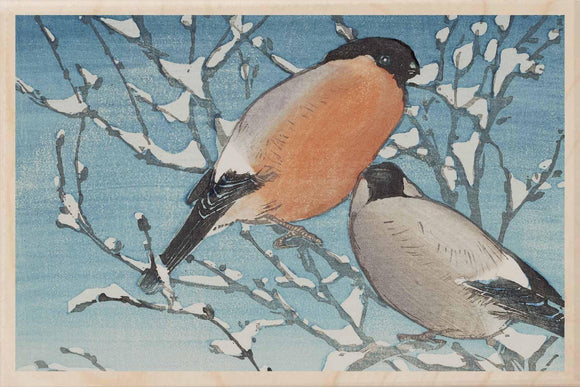 BULLFINCHES-[national_galleries]-[Scotland]-[wooden_postcard]THE WOODEN POSTCARD COMPANY