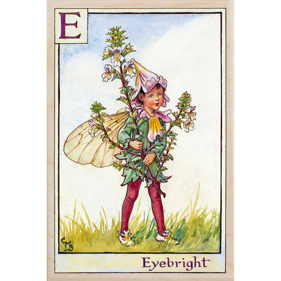 E EYEBRIGHT FAIRY