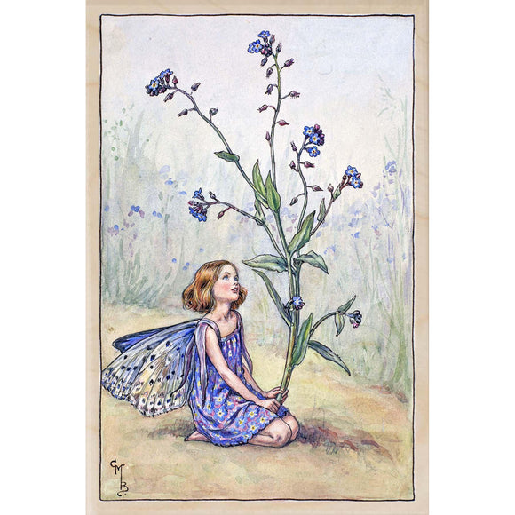 FORGET-ME-NOT SUMMER FAIRY
