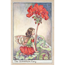 Load image into Gallery viewer, GERANIUM FAIRY