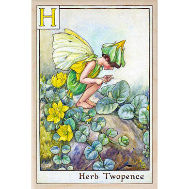 H HERB TWOPENCE FAIRY