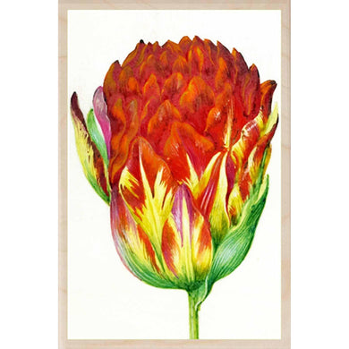 HOLTZBECK, RED TULIP WALL ART