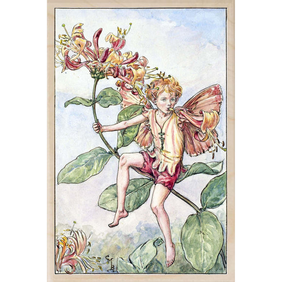 HONEYSUCKLE FAIRY