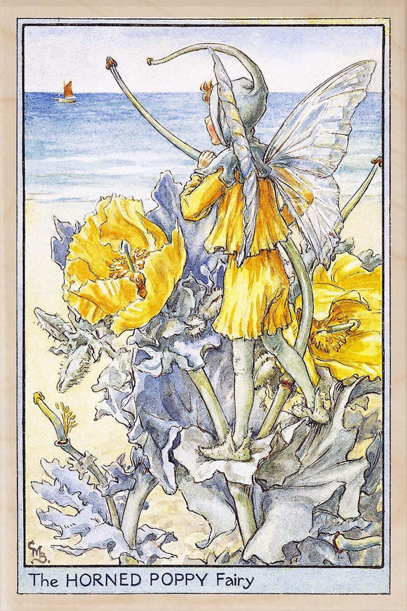 HORNED POPPY FAIRY