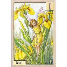 Load image into Gallery viewer, I IRIS FAIRY
