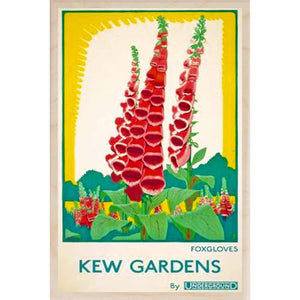 KEW GARDENS, FOXGLOVES-[wooden_postcard]-[london_transport_museum]-[original_illustration]THE WOODEN POSTCARD COMPANY