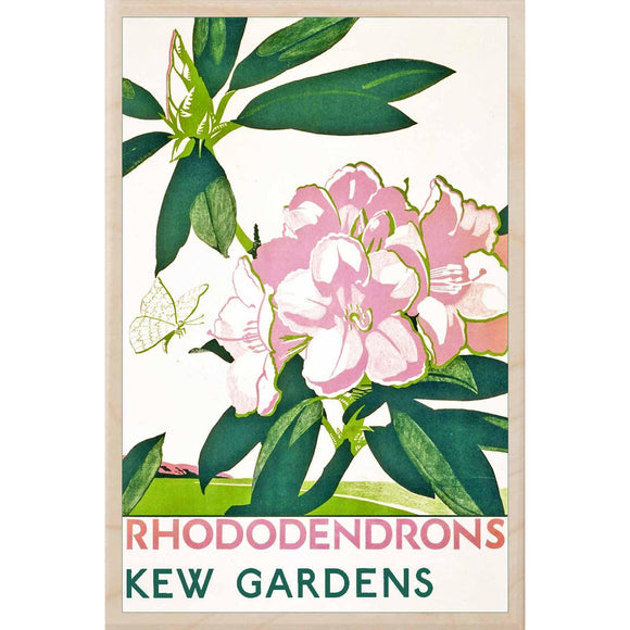 KEW GARDENS, RHODODENDRONS-[wooden_postcard]-[london_transport_museum]-[original_illustration]THE WOODEN POSTCARD COMPANY