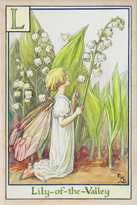 L, LILY OF THE VALLEY FAIRY