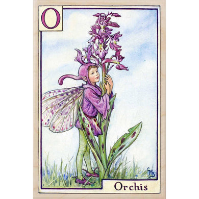 O ORCHIS FAIRY