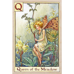 Q QUEEN OF THE MEADOW FAIRY