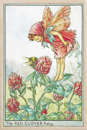 RED CLOVER FAIRY