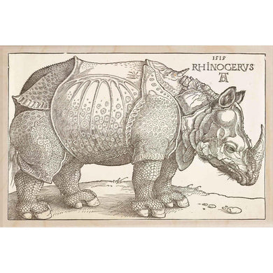 RHINOCERUS WALL ART