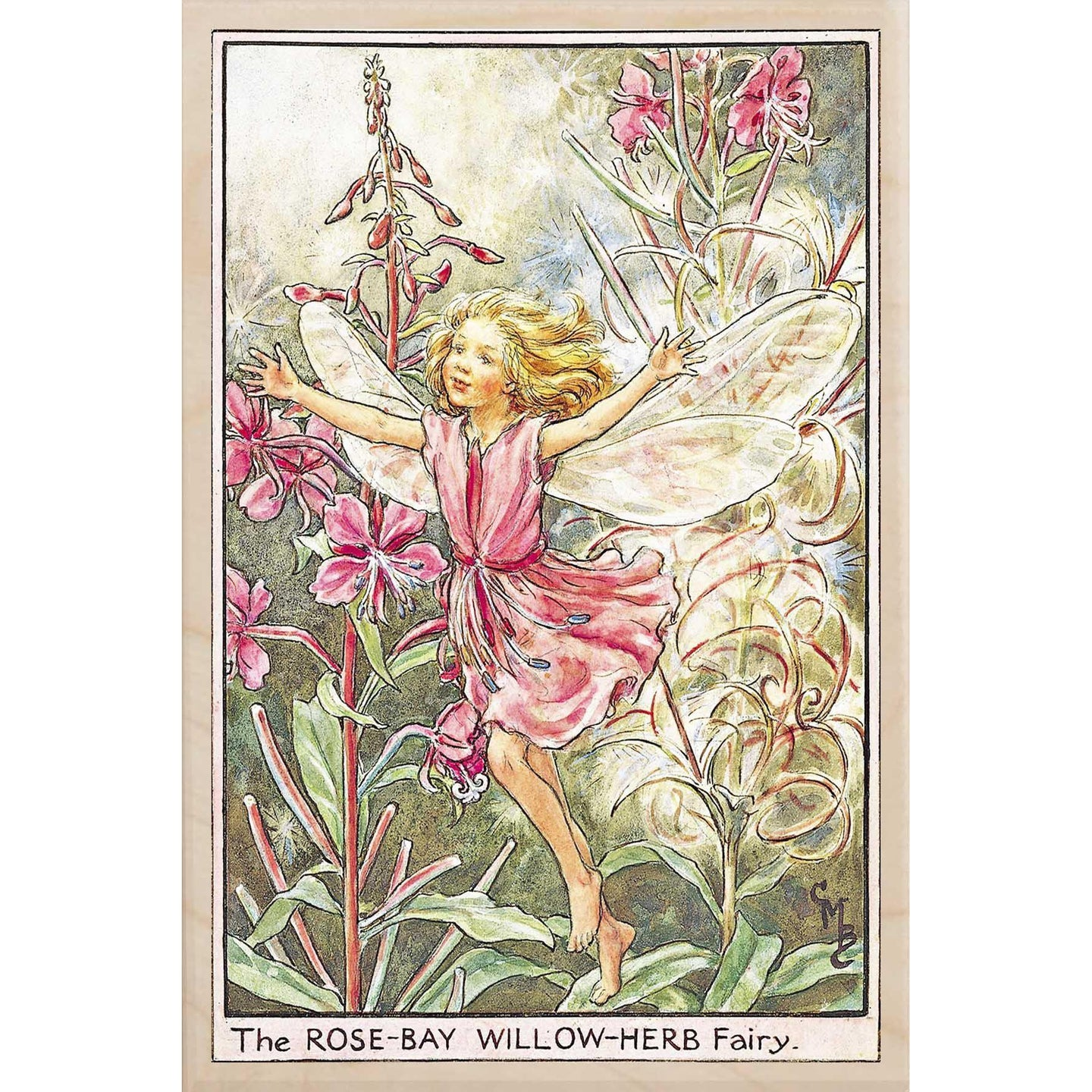 ROSE BAY WILLOW HERB FAIRY