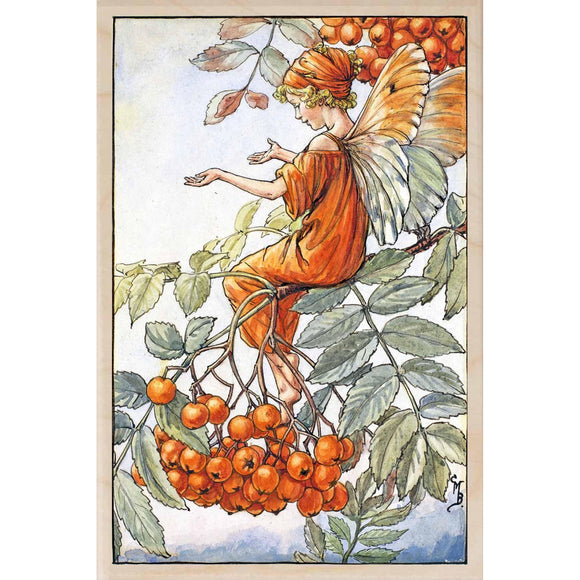 ROWAN TREE FAIRY