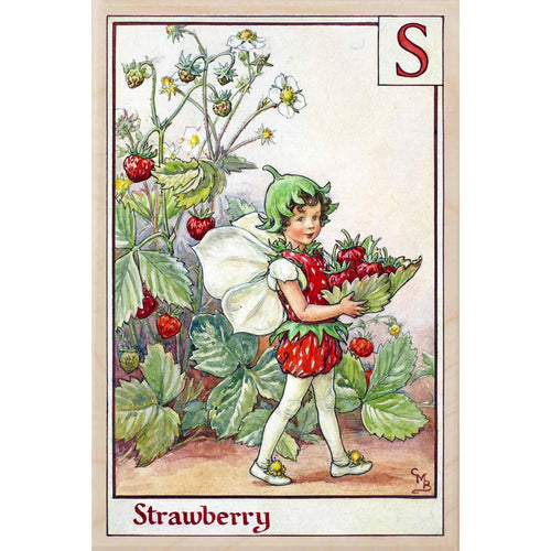 S STRAWBERRY FAIRY