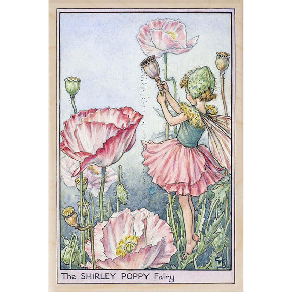 SHIRLEY POPPEY FAIRY