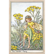 Load image into Gallery viewer, TANSY FAIRY