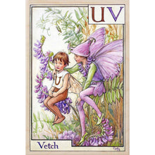 Load image into Gallery viewer, U-V, VETCH FAIRY