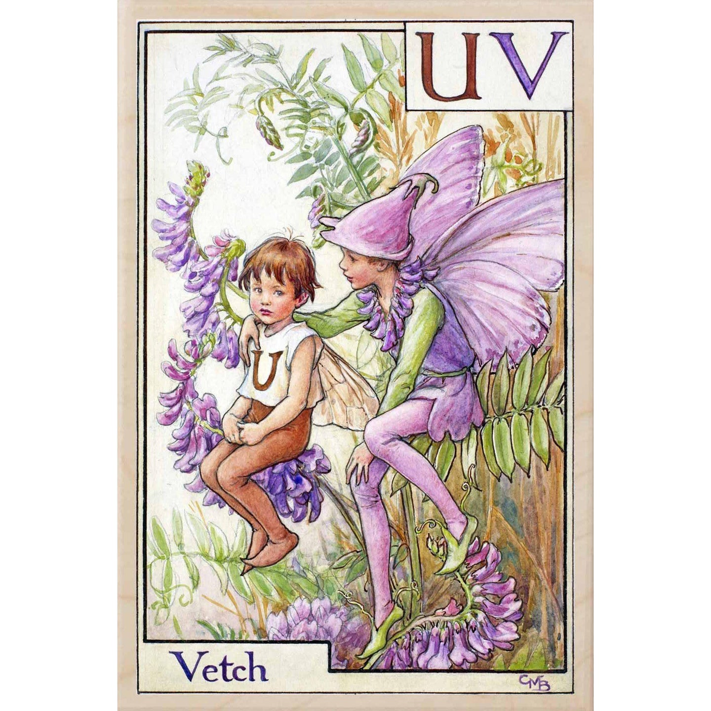 U-V, VETCH FAIRY