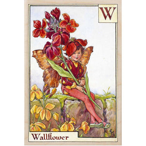 W, WALLFLOWER FAIRY