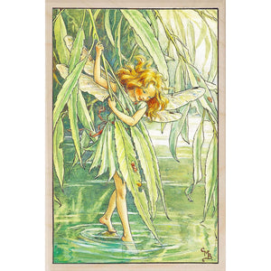 WILLOW TREE FAIRY