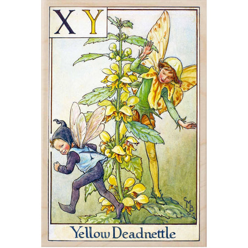X Y YELLOW NETTLE FAIRY