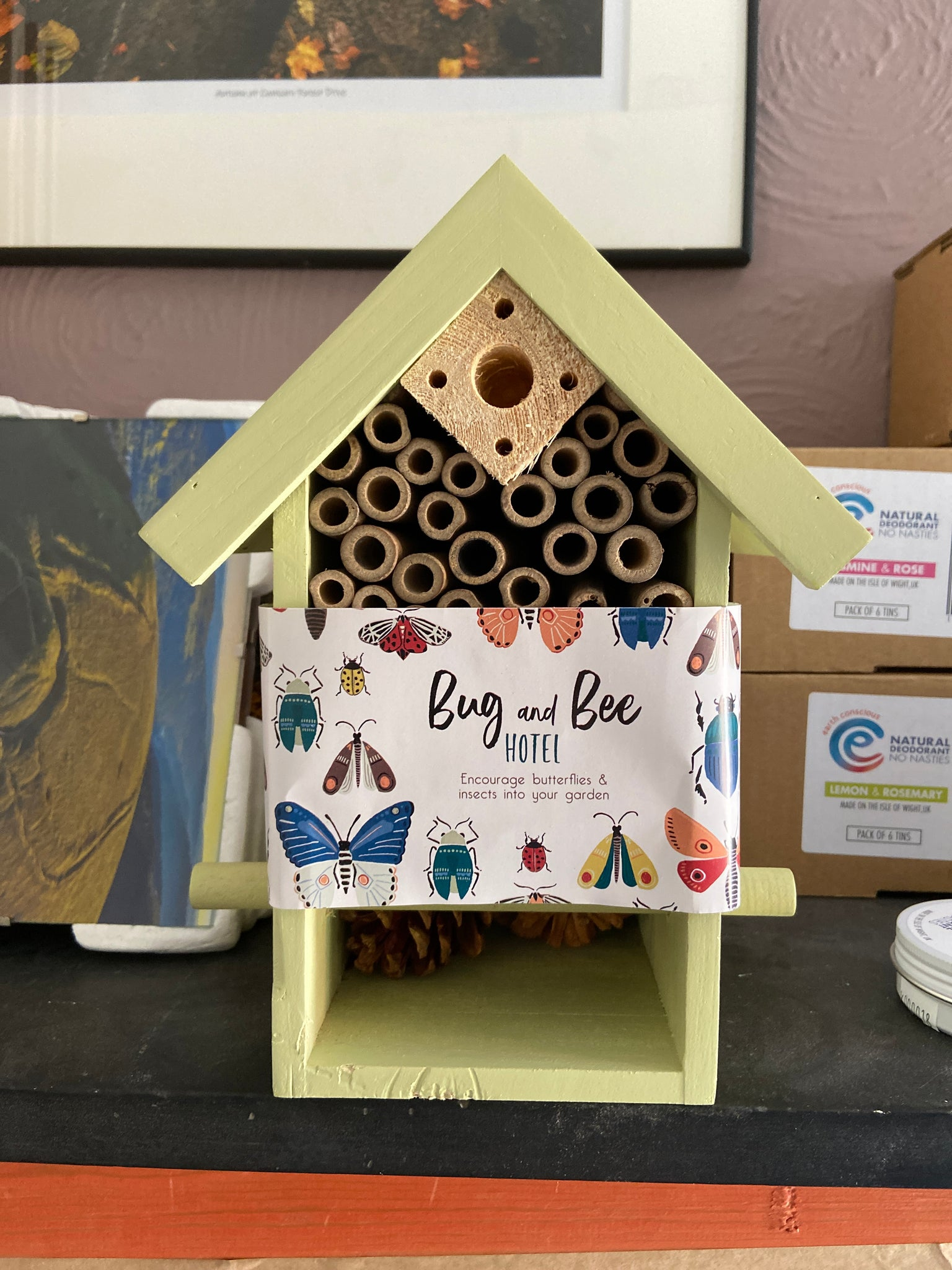 Bug and Bee Hotel