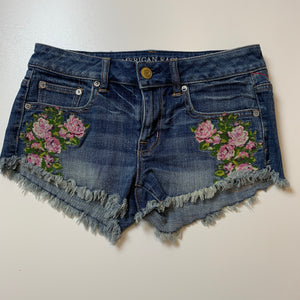 American Eagle Shorts // Size 2