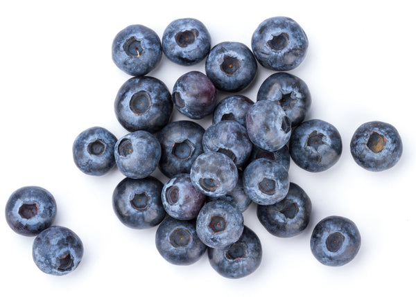 Fresh Berries Blue 6oz Clamshell 1ct