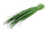 Fresh Herb Chive 1 Bunch