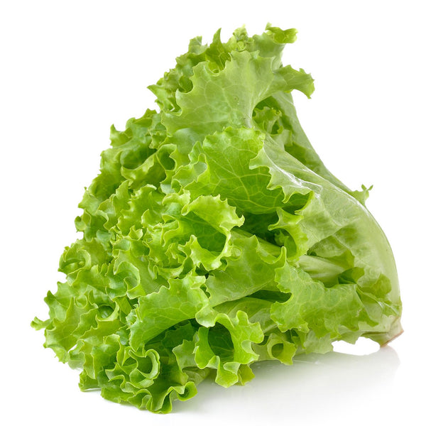 Fresh Green Leaf Lettuce 1ct Head