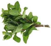 Fresh Herb Mint 1 Bunch