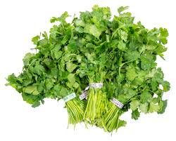 Fresh Cilantro Bunch 1ct