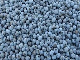 Frozen IQF Blueberries 10lbs Bulk Box (Flav-R-Pac)