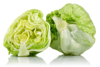 Fresh Iceberg Lettuce Heads 2ct Bag