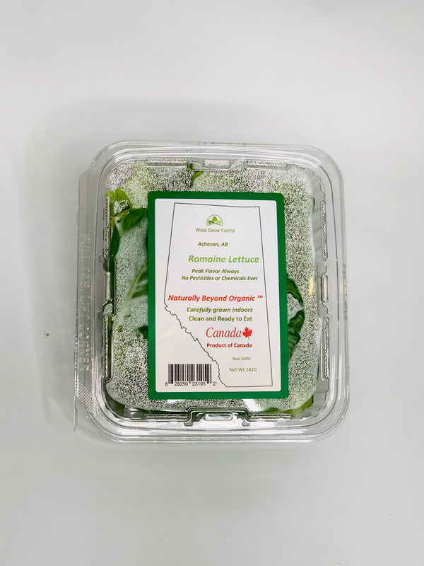 West Grow Farms - Romaine Lettuce