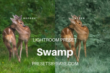 Load image into Gallery viewer, 5 Swamp Presets | Lightroom Presets